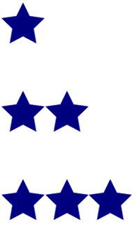 Fitwel stars, blue stars for Fitwel, fitwel criteria, fitwel scorecard, fitwel consulting, fitwel scorecard