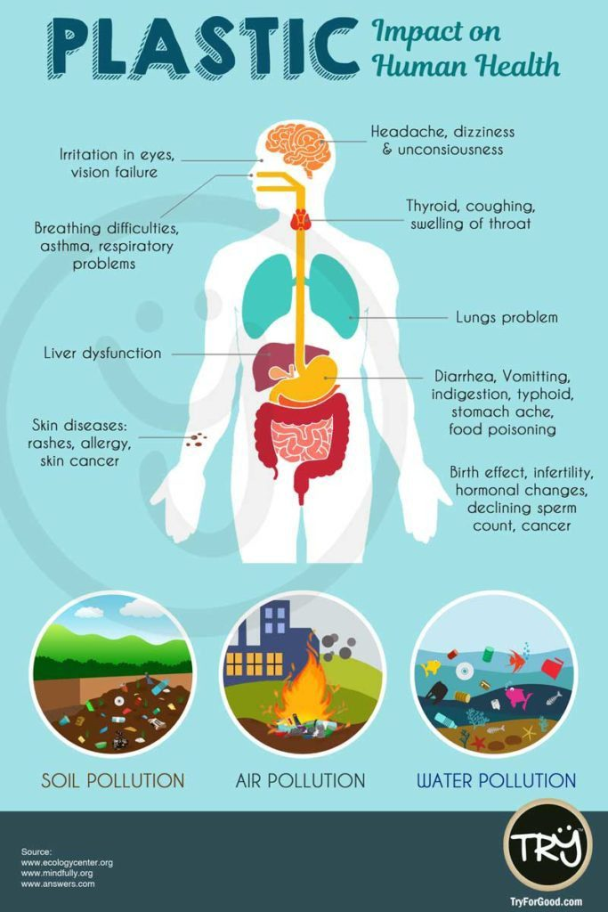 image showing how plastic affects our bodies