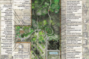 site plan of of a food forest
