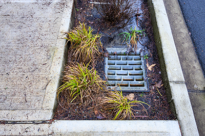 photo showing a drain for rainwater