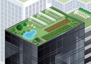 green roofs are sustainable